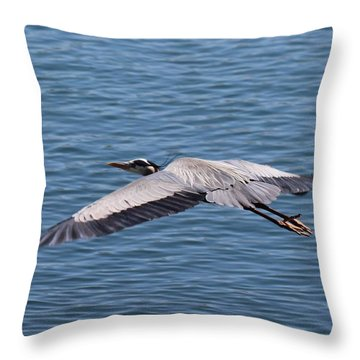 Great Blue Heron Flying Over Morro Bay Throw Pillow