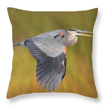 Great Blue Heron In Flight Throw Pillow