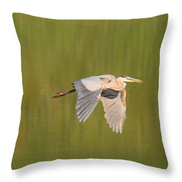 Throw Pillow featuring the photograph Geat Blue Heron Burgess Res Divide Co by Margarethe Binkley