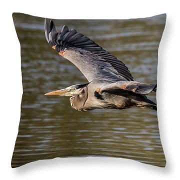 Great Blue Heron In Stratford Throw Pillow