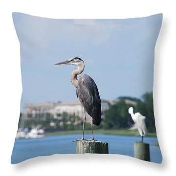 Throw Pillow featuring the photograph Great Blue Heron by Margaret Palmer