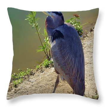 Throw Pillow featuring the photograph Great Blue Heron by Mariola Bitner