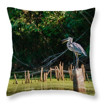 Great Blue Heron Mouth Throw Pillow by Edward Peterson