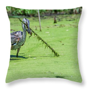 Great Blue Heron Mouthful Throw Pillow by Edward Peterson