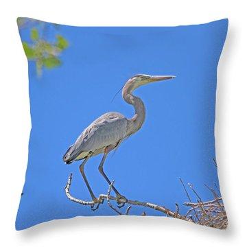 Great Blue Heron Nest Protector  Throw Pillow