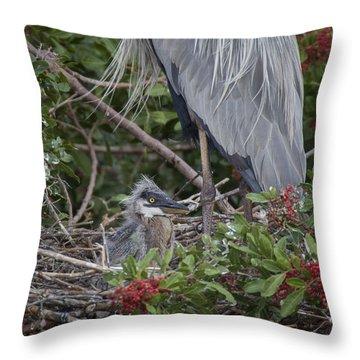 Great Blue Heron Nestling Throw Pillow