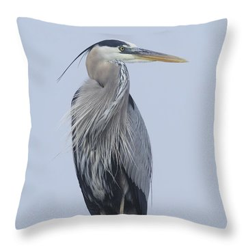 Throw Pillow featuring the photograph Great Blue Heron On A Boardwalk Rail by Bradford Martin