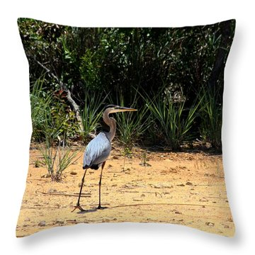 Throw Pillow featuring the photograph Great Blue Heron On Beach by Sheila Brown