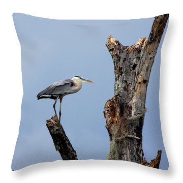 Throw Pillow featuring the photograph Great Blue Heron Perched by Barbara Bowen