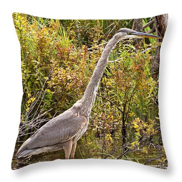 Great Blue Heron Throw Pillow by Peter J Sucy