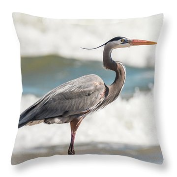 Throw Pillow featuring the photograph Great Blue Heron Profile by Patti Deters