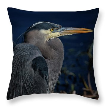Throw Pillow featuring the photograph Great Blue Heron by Randy Hall