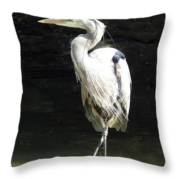 Great Blue Heron Standing Profile Throw Pillow