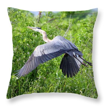 Throw Pillow featuring the photograph Great Blue Heron Takeoff by Barbara Bowen