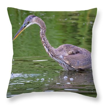 Throw Pillow featuring the photograph Great Blue Heron - The One That Got Away by Ricky L Jones