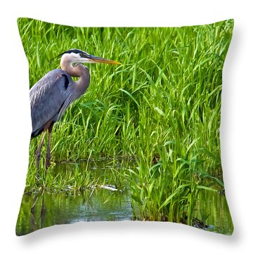 Great Blue Heron Waiting Throw Pillow
