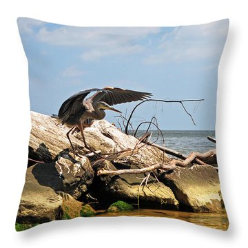 Great Blue Heron Wings Outstretched Throw Pillow by Rebecca Sherman