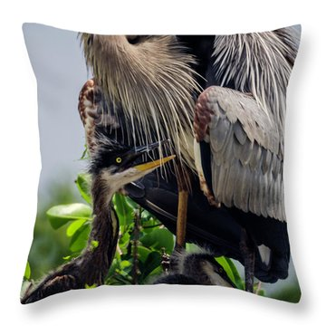 Great Blue Heron With Babies Throw Pillow