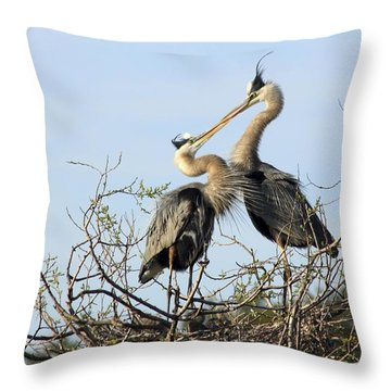 Great-blue Herons On Nest At The Venice Rookery, Florida Throw Pillow