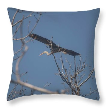 Throw Pillow featuring the photograph Great Blue In Flight by David Bearden