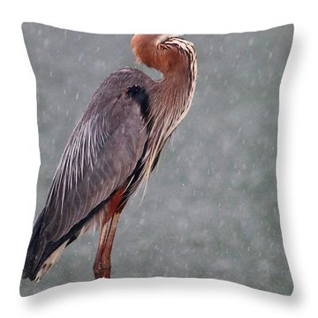 Great Blue In The Rain Throw Pillow