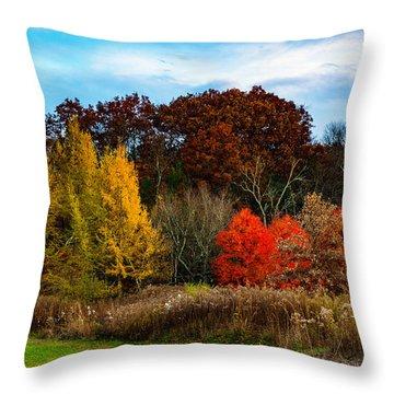 Great Brook Farm Autumn Throw Pillow