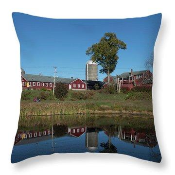 Great Brook Farm Throw Pillow