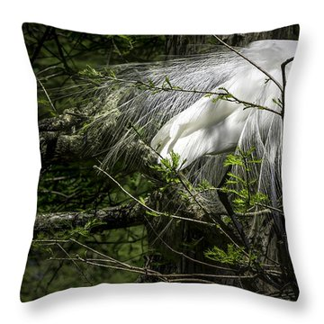 Great Egret #2 Throw Pillow