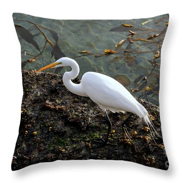 Great Egret At A Low Tide Throw Pillow