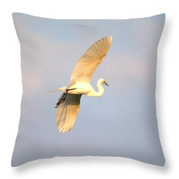 Great Egret Bathed In Golden Sunlight Throw Pillow