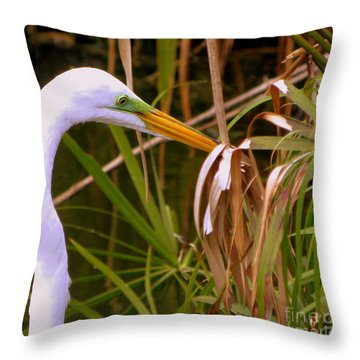 Throw Pillow featuring the photograph Great Egret Close Up Profile by Terri Mills