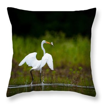 Great Egret, Great Fisherman Throw Pillow