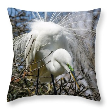 Throw Pillow featuring the photograph Great Egret by Gregg Southard