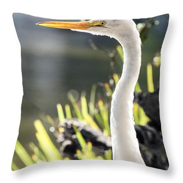 Great Egret Headshot Profile  Throw Pillow