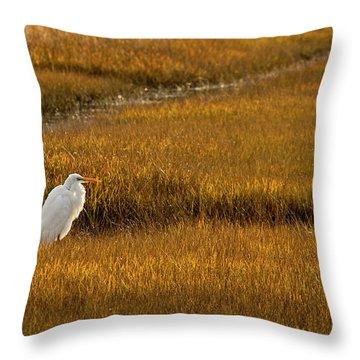 Great Egret In Morning Light Throw Pillow