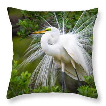 Great Egret Nesting St. Augustine Florida Coastal Bird Nature Throw Pillow