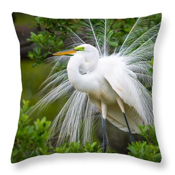 Great Egret Nesting St. Augustine Florida Coastal Bird Nature Throw Pillow