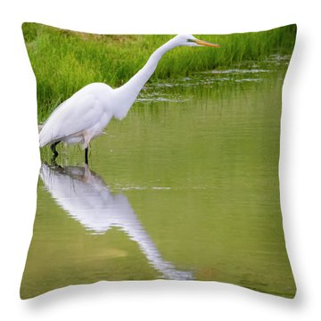 Throw Pillow featuring the photograph Great Egret Ready To Pounce by Ricky L Jones
