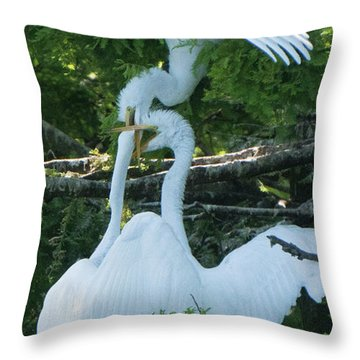 Great Egrets Horsing Around Throw Pillow