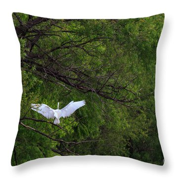 Great Egrets In The Shore Throw Pillow