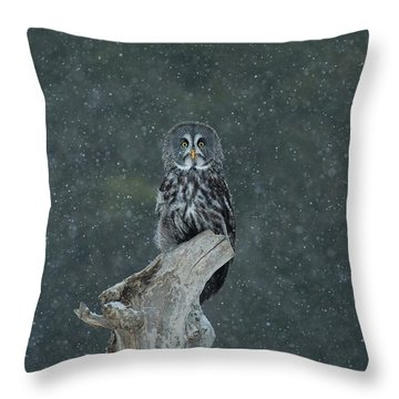 Great Gray Owl In Snowstorm Throw Pillow