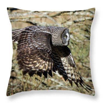 Great Grey Flying Throw Pillow by Torbjorn Swenelius