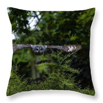 Great Grey Owl In Flight Throw Pillow