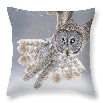 Flight Throw Pillows