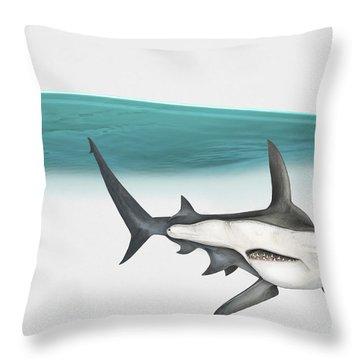 Great Hammerhead Sphyrna Mokarran - Squat-headed Hammerhead Shark - Grand Requin-marteau - Cornuda Throw Pillow