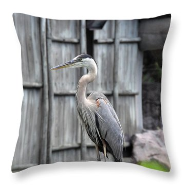 Throw Pillow featuring the photograph Great Heron by John Black