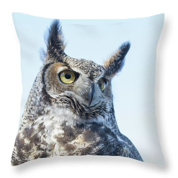 Great Horned Owl 1 Throw Pillow
