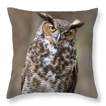 Throw Pillow featuring the photograph Great Horned Owl 3 by Chris Scroggins