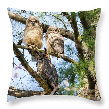 Great Horned Owl Family Throw Pillow