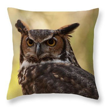 Great Horned Owl In A Tree 1 Throw Pillow by Chris Flees